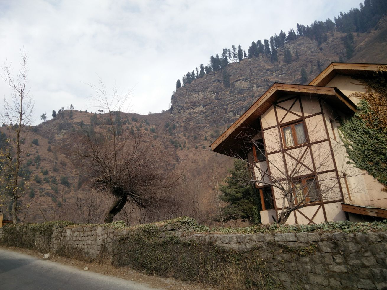 Houses in Manali