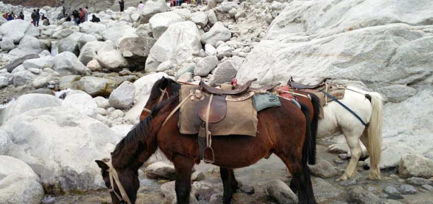 Top 8 Things To Do In Manali: with Valleys, Mountains & Mythology