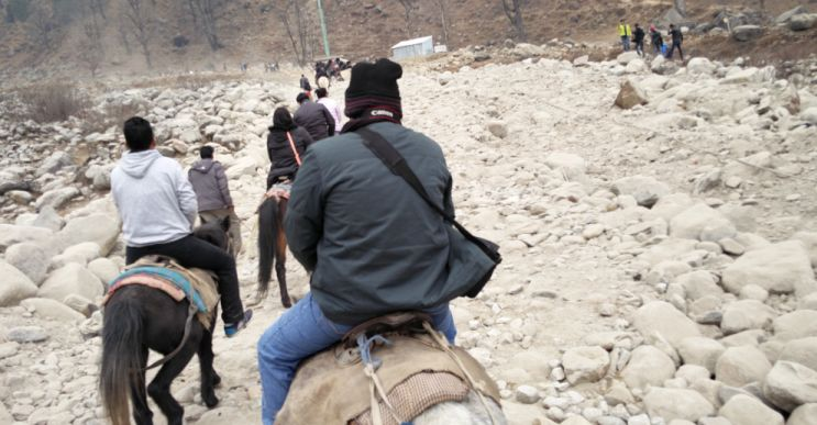 Horse Trekking at Manali